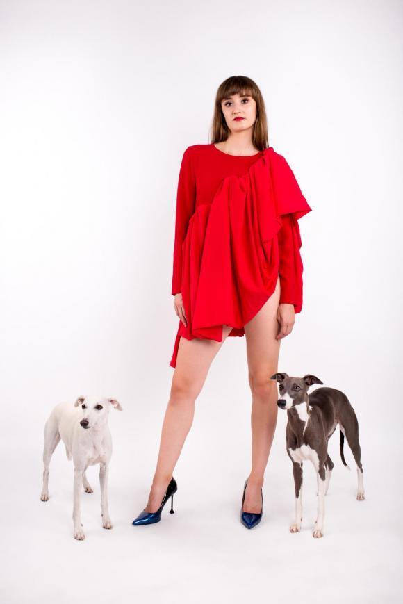 Mini red ruffle dress